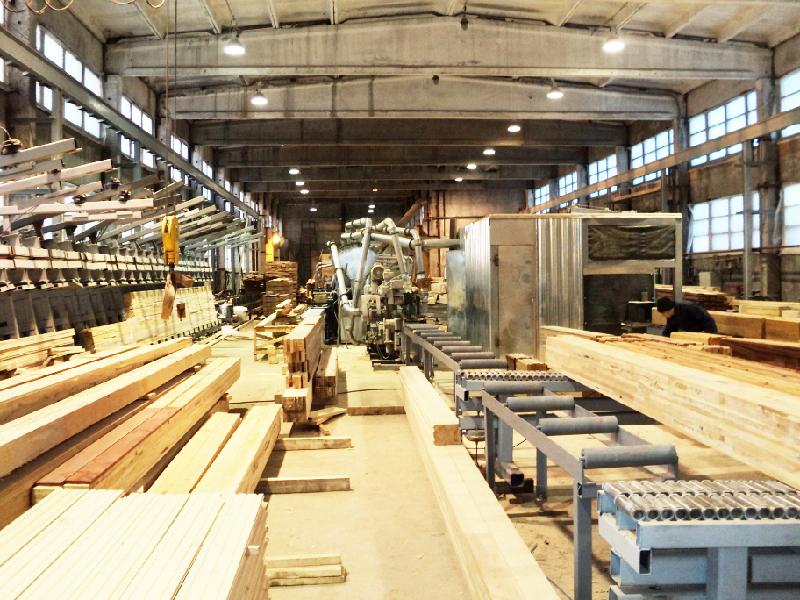 В Костромской области будет построен крупнейший деревоперерабатывающий завод