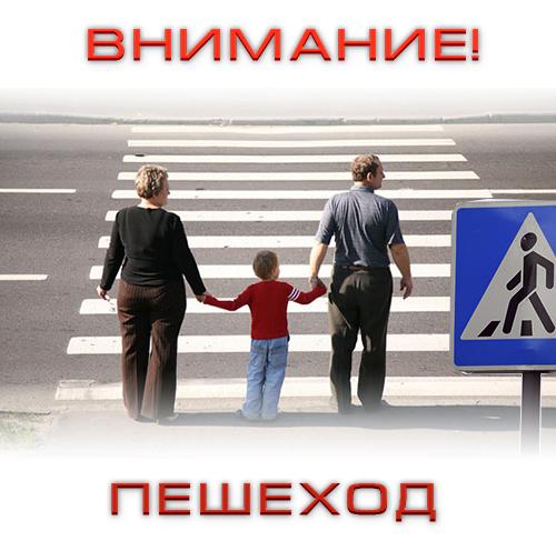 В Костромской области началась акция «Внимание! Пешеход»