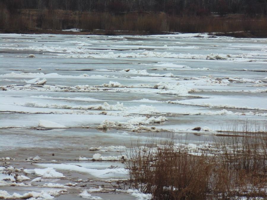 В Костромской области уровень воды в реках поднялся на 4 см