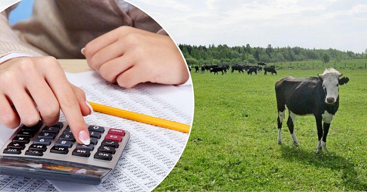 В Костромской области введены дополнительные критерии отбора получателей субсидий в сельском хозяйстве