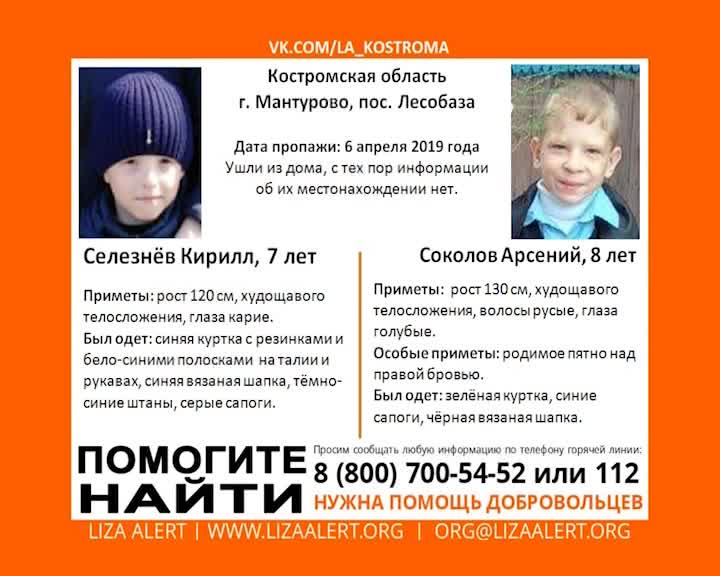 В Костромской области ищут пропавших мальчиков