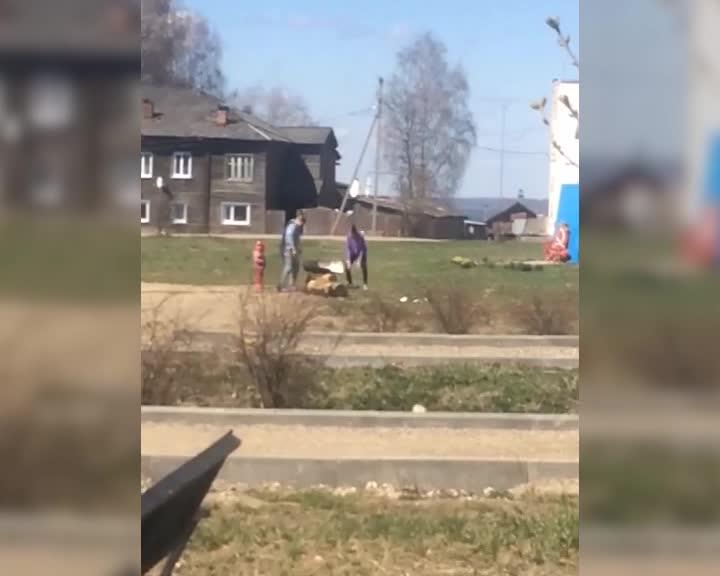 В Костромской области соцсети помогли найти похитительницу уличных скамеек