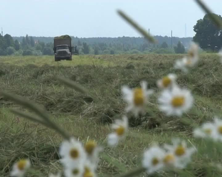 В Костромской области сельхозкооперативы получат государственные субсидии