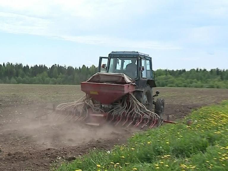 В Костромской области посевные работы выполнены на 76 процентов