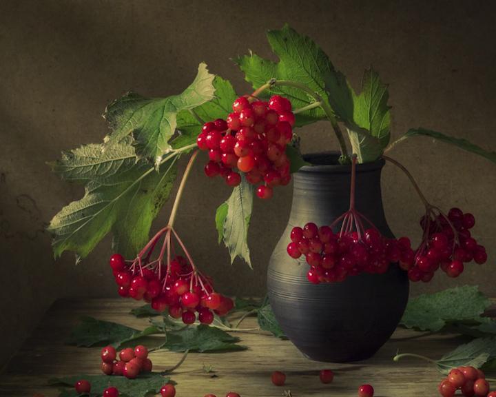 «Объективно о разном» – новая фотовыставка в Костроме