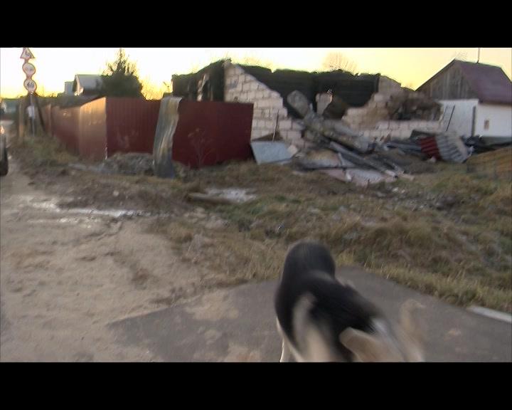 Ситуация в семье Говоровых на контроле у губернатора Костромской области
