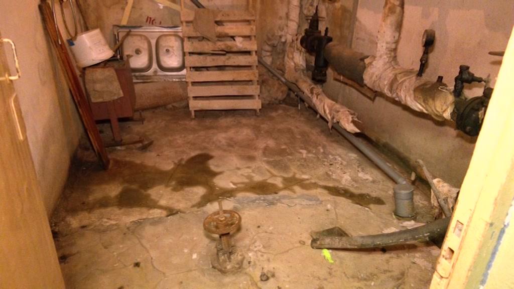 Власти Костромы взяли под контроль ситуацию в детской поликлинике №5