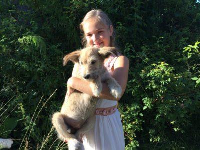 В Костромской области появился ещё один благотворительный фонд для животных