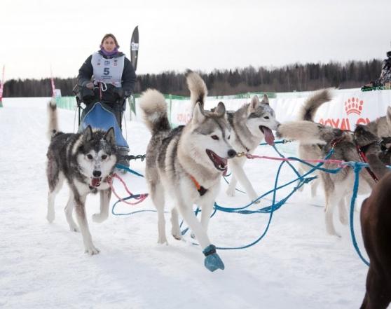 В Костромской области стартует уникальный проект «Маленькая Северная Надежда-2019»