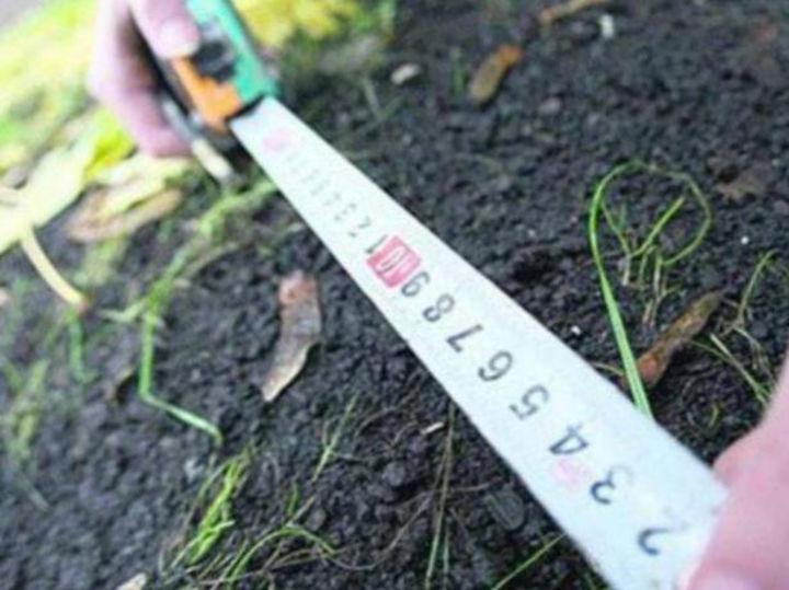 С начала года в Костромской области выделено более сорока льготных земельных участков
