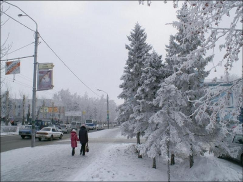 В Костромской области ожидаются заморозки и сильный ветер