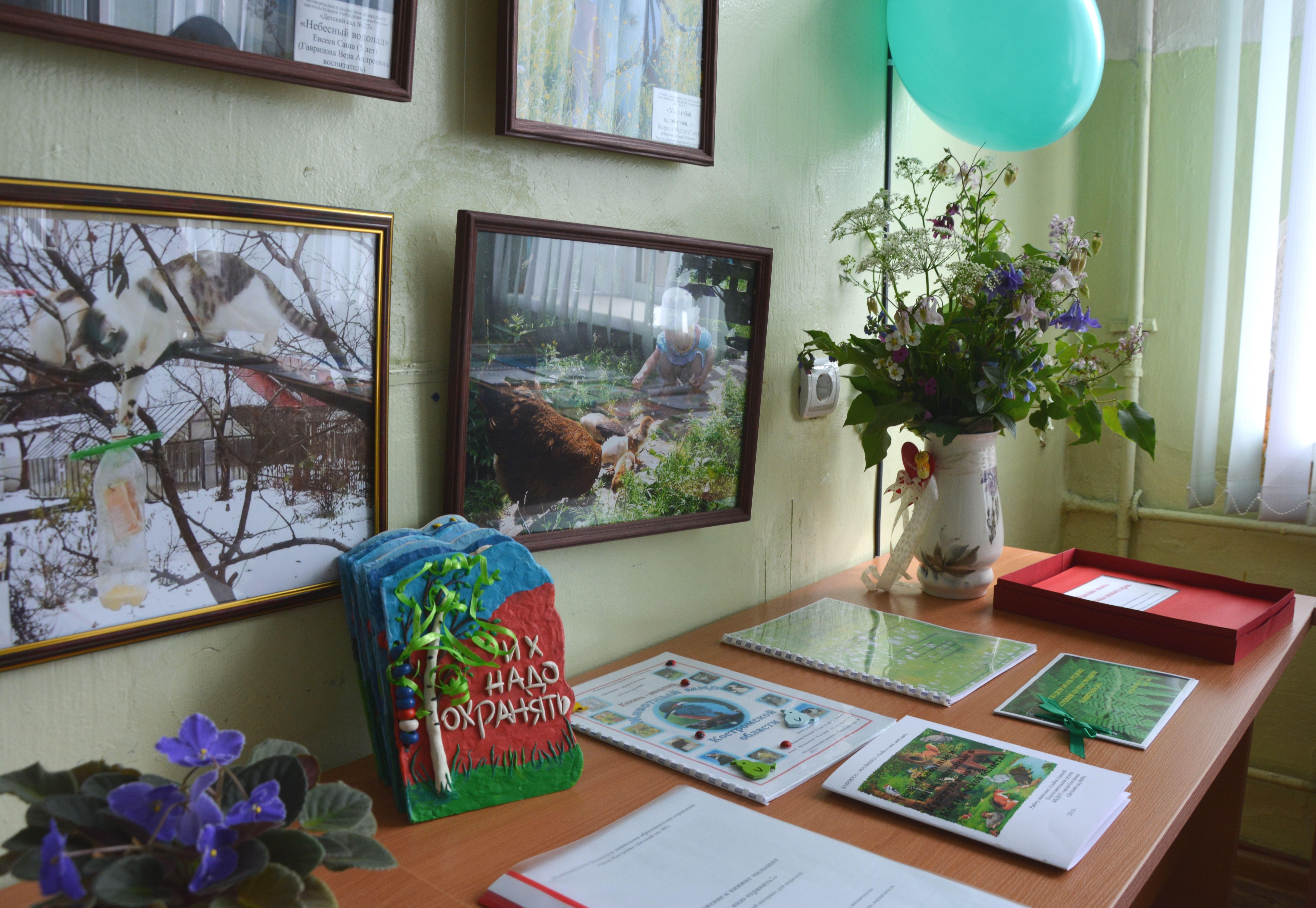 В Костроме подводят итоги экологического конкурса «Книжка-малышка. Удивительное рядом»