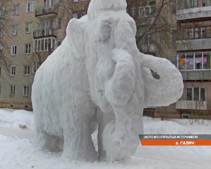 В городе Галич Костромской области  появился огромный снежный мамонт
