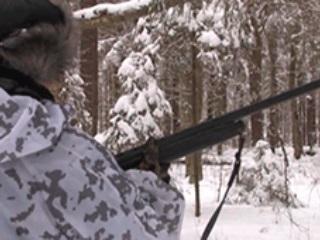 В Костромской области закрыт охотничий сезон на пушного зверя