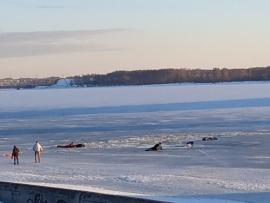 В Костроме спасатели вытащили из Волги трех подростков провалившихся под лед