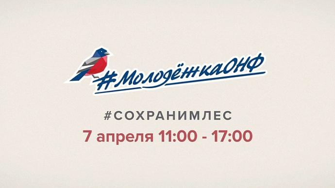 Костромская область присоединится к всероссийской акции #Cохранимлес