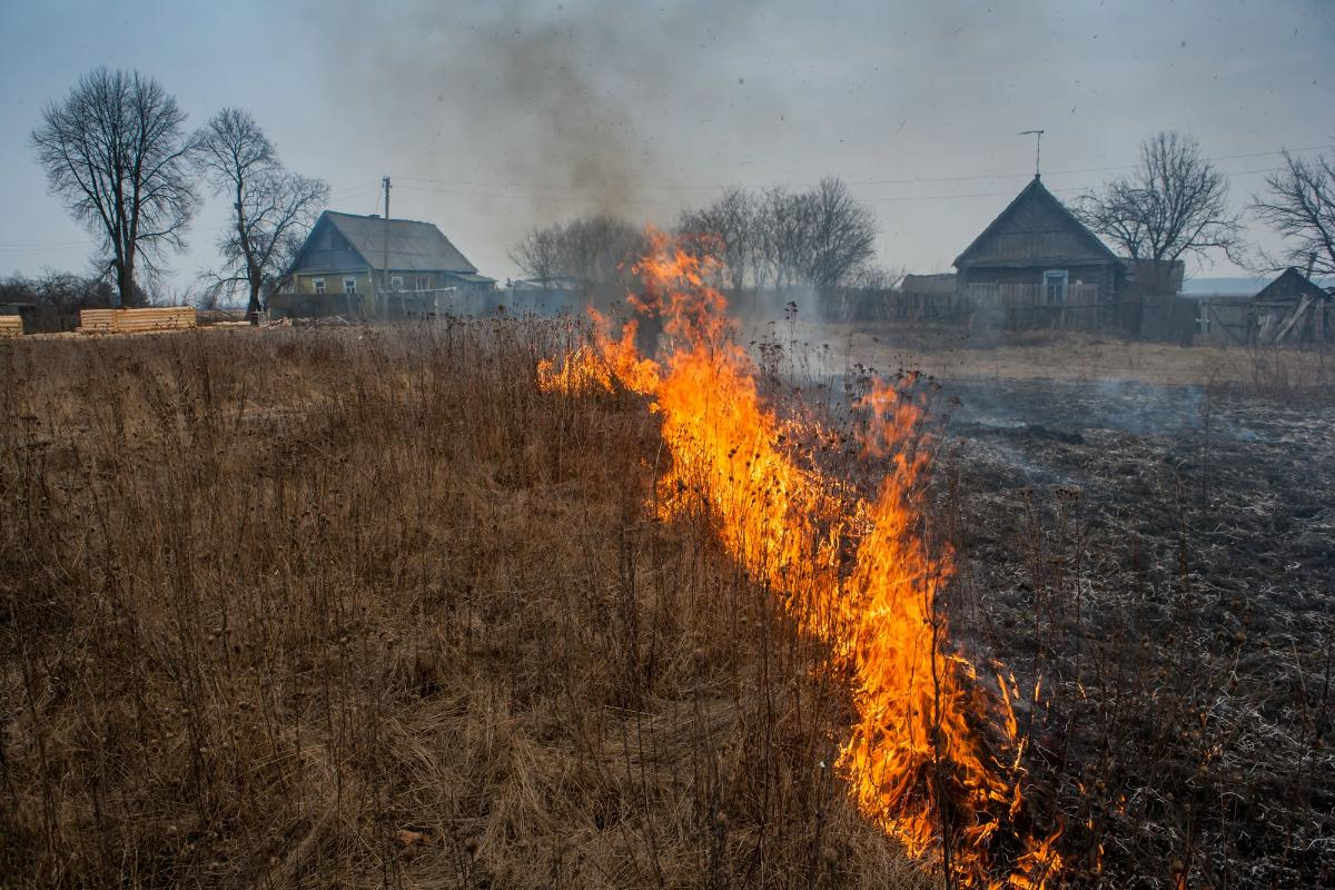 Жителям Костромской области напоминают об опасности пала травы