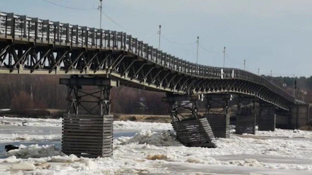 Людей с берега на берег реки перевозят спасатели