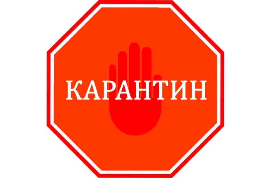 Предприниматели Костромы понимают важность текущего момента