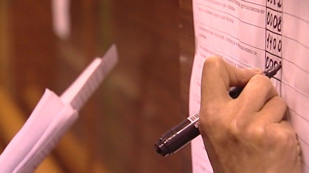 Более 42 % костромичей уже проголосовали по изменениям в Конституцию