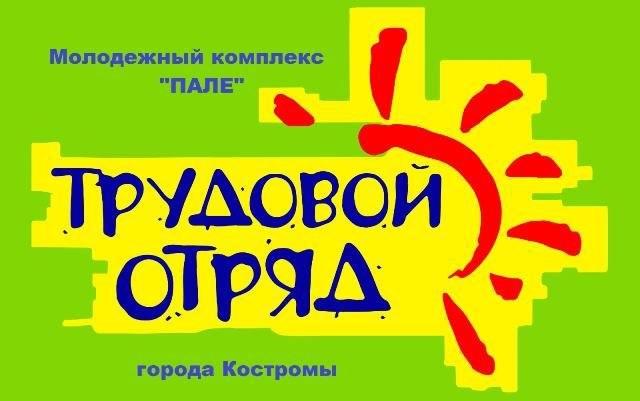 Костромских подростков приглашают в экологические отряды