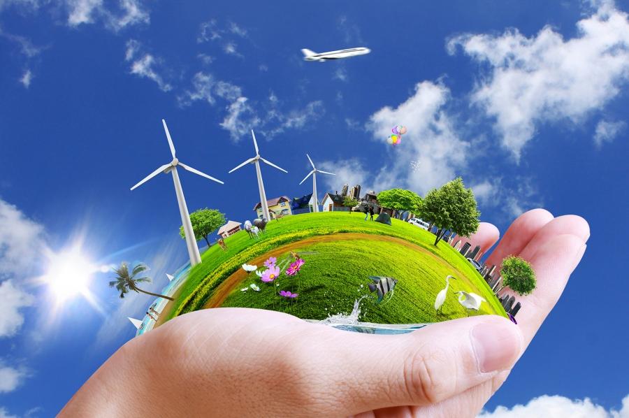 Знания экологии популяризируют