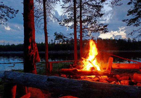 Подростки и их спасители ночевали в лесу