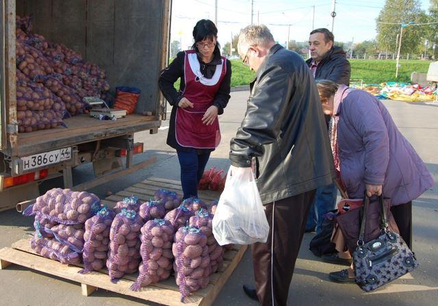 Сезонная торговля овощами стартовала