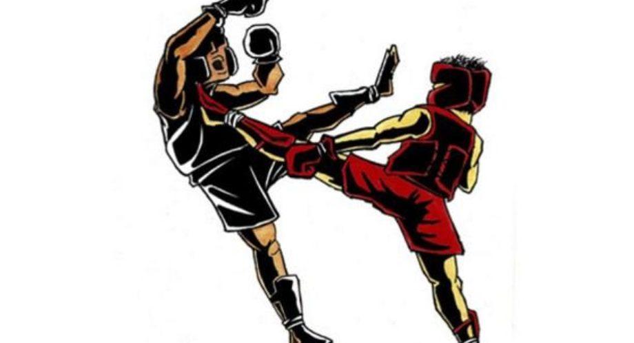 Галичане вновь отличились в боевых искусствах