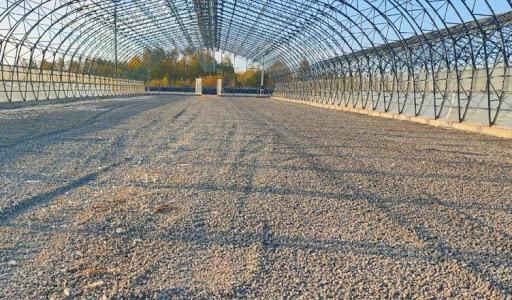 В Шарьинском районе появится новая молочная ферма на 200 голов