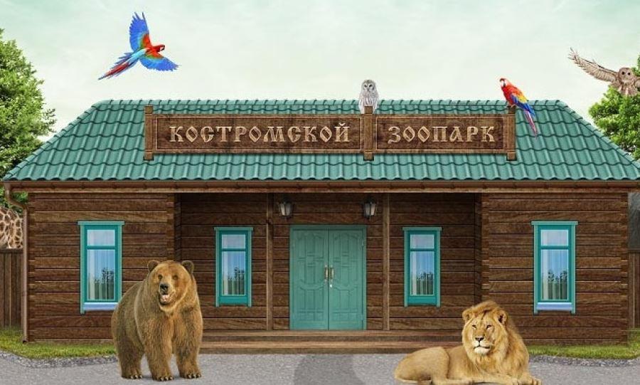 Костромской зоопарк попал в лидеры Всероссийского рейтинга
