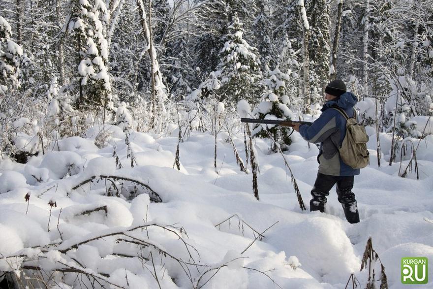 В Костромской области раскрыт факт браконьерства