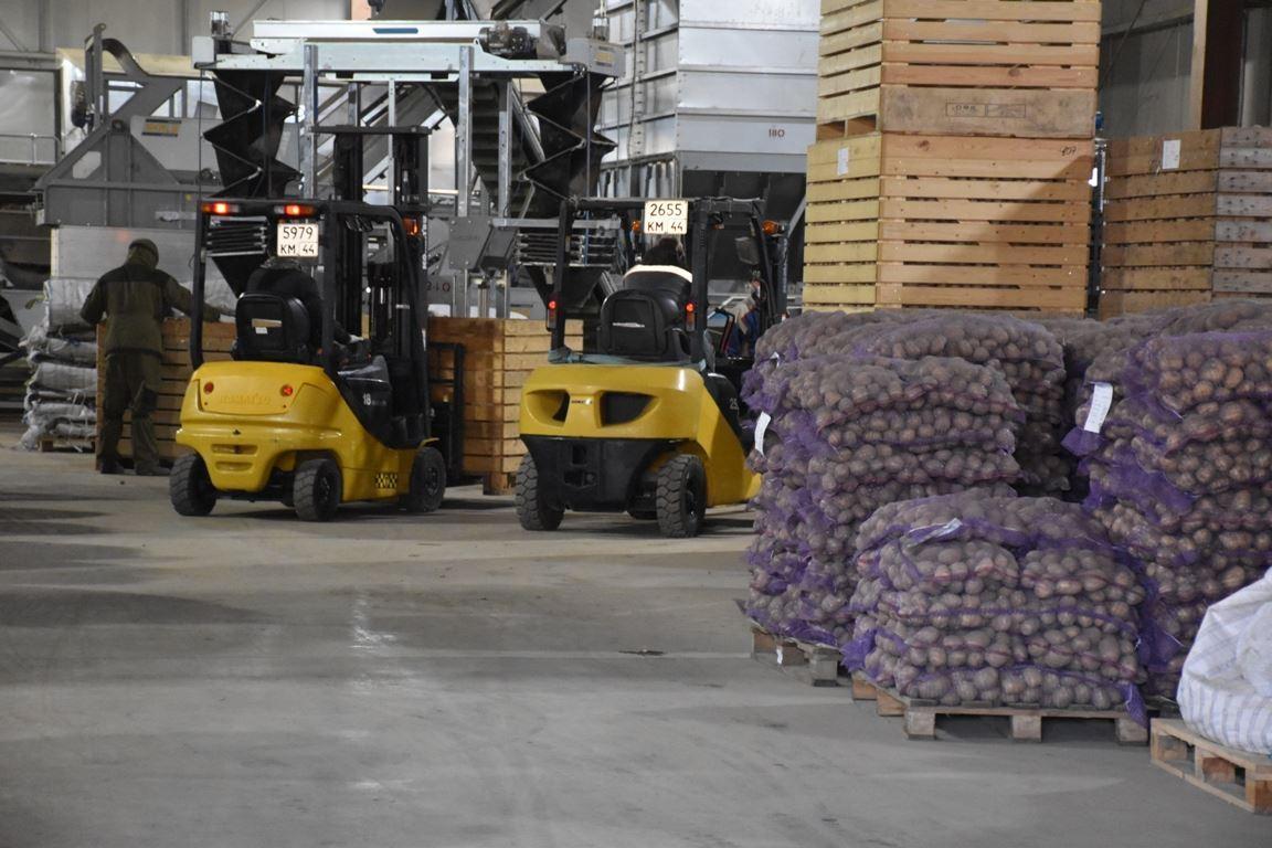 Предприятия АПК, работающие на экспорт, получат поддержку