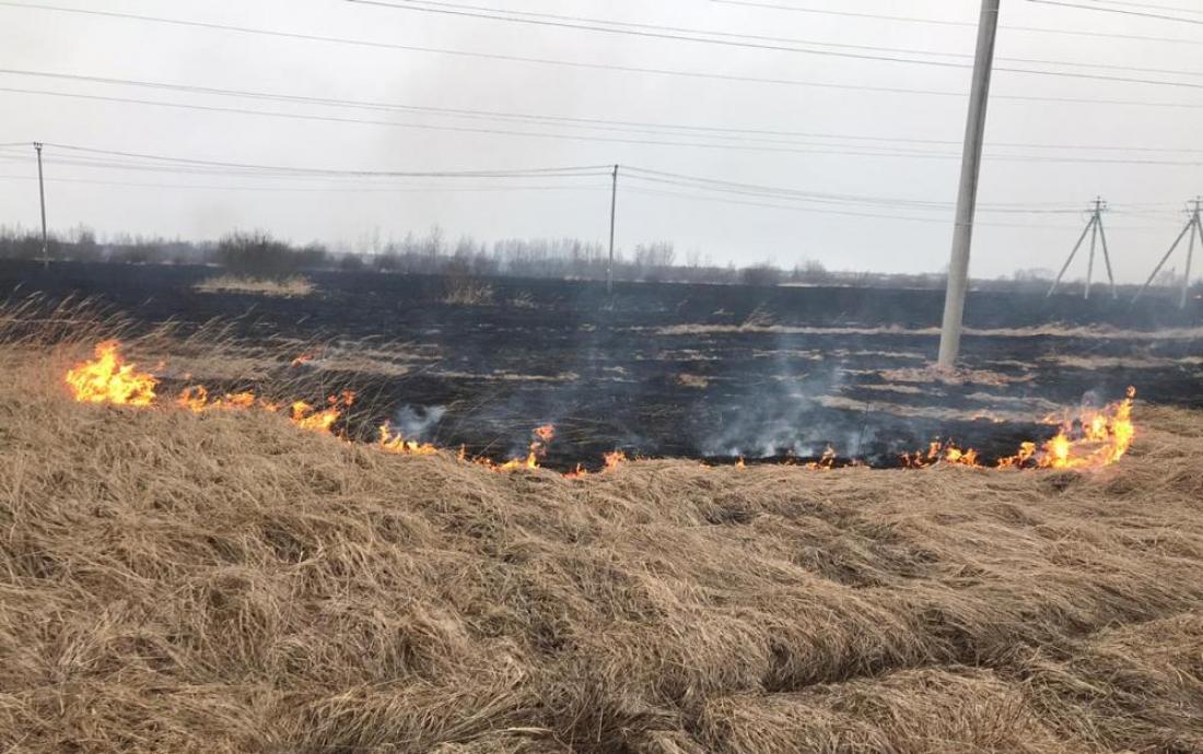 Сжигание сухой травы может привести к трагедии