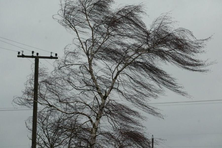 В Костромской области прогнозируется гроза и усиление ветра
