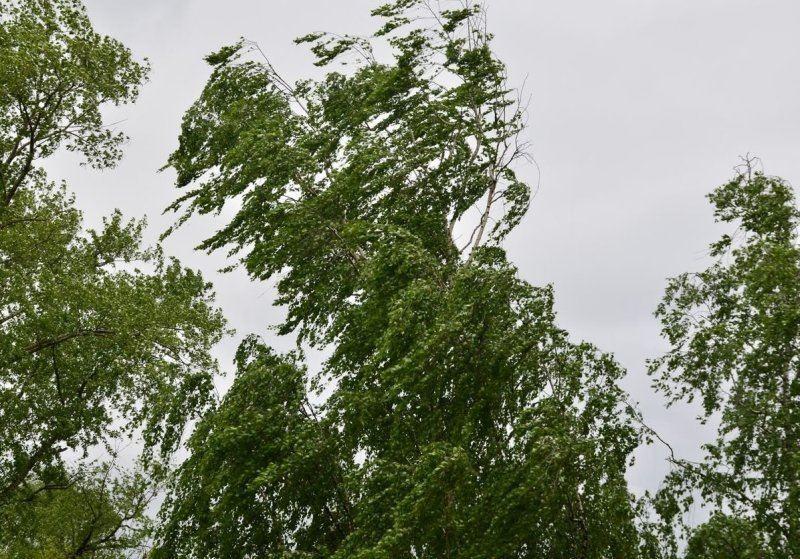 Неблагоприятный прогноз в Костромской области сохраняется
