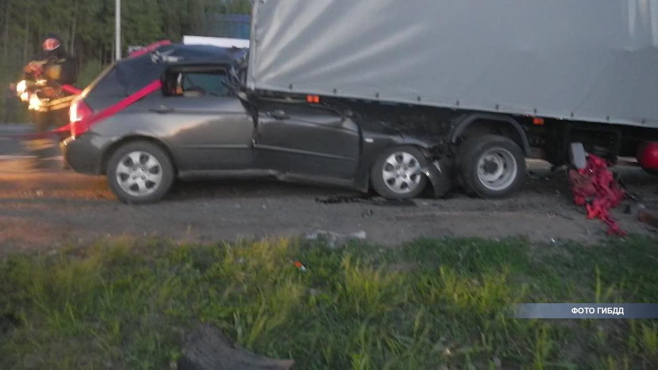 В Шарьинском районе на трассе погиб водитель