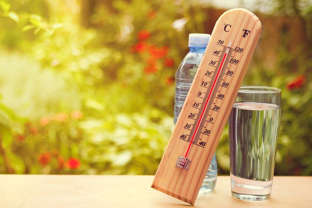 На территории Костромской области прогнозируют аномально жаркую погоду