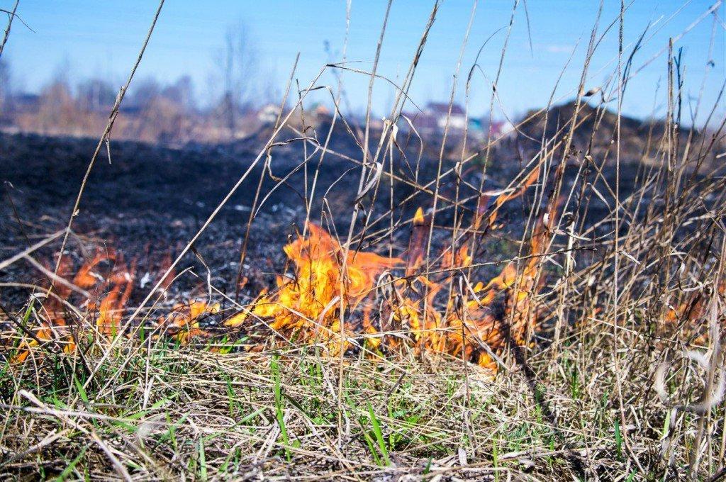 Костромской области местами сохранится чрезвычайно высокая пожароопасность V класса.
