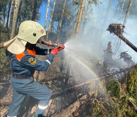 Еще один пожар тушат в Пыщугском районе
