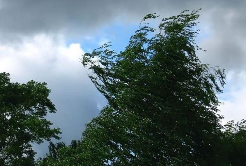 В Костромской области ожидается усиление ветра