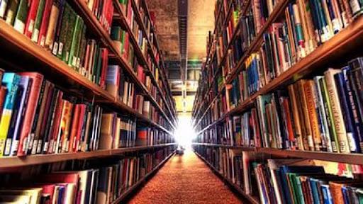 Библиотекари Костромы налаживают связи с коллегами из городов-побратимов