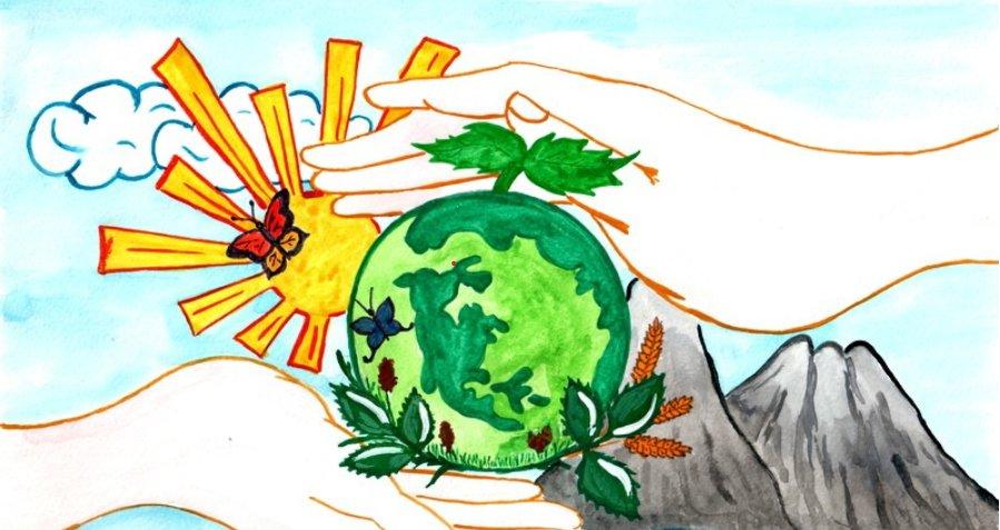 Костромских школьников приглашают принять участие в конкурсе экологических рисунков