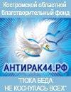 В Костроме сегодня День добрых дел