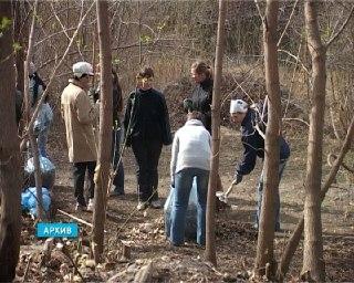 Власти просят жителей Шарьи выйти на уборку города