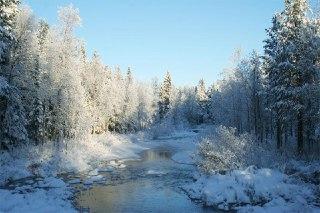 В Костромской области начали леденеть реки
