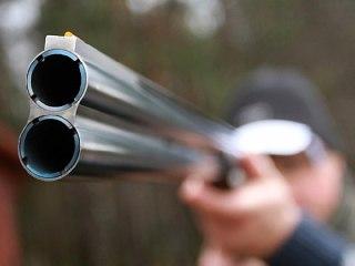 Под Костромой поймали браконьера, который не планировал стрелять в лося