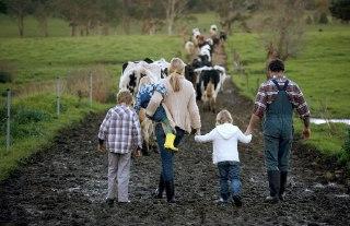 В Костромской области аграрии сами будут воспитывать себе смену