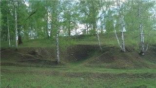 В Костроме парк «Заволжье» построят в следующем году