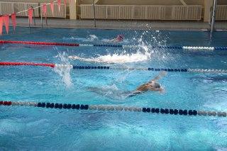 В Костроме стартовал открытый Чемпионат области по плаванию «Веселый дельфин»